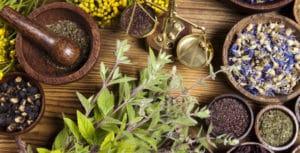اثر دو ترکیب گیاهان دارویی بر عملکرد جوجه های گوشتی